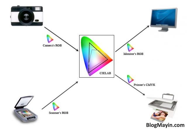 Thủ thuật in chuẩn màu với ICC PROFILE trên máy in Epson T50 & T60 + Hình 3